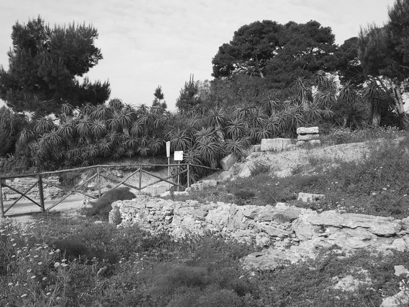 Mozia, 2007