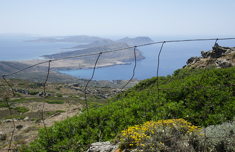 11. Asinara panorama