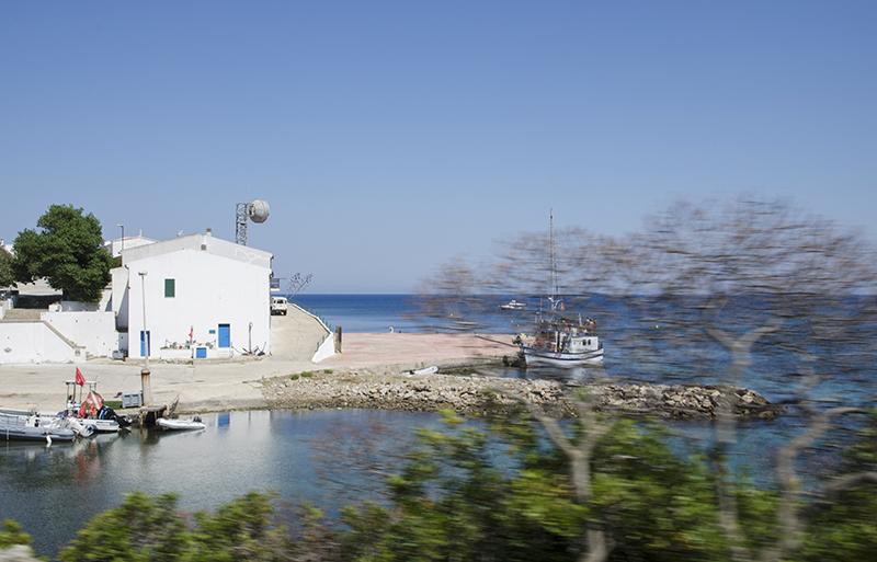 14. Asinara, Cala d'Oliva